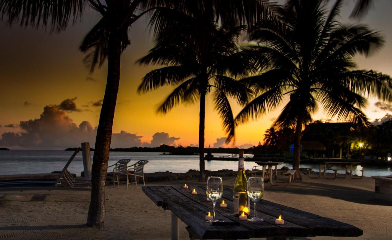 Hotels In Palm Island Florida