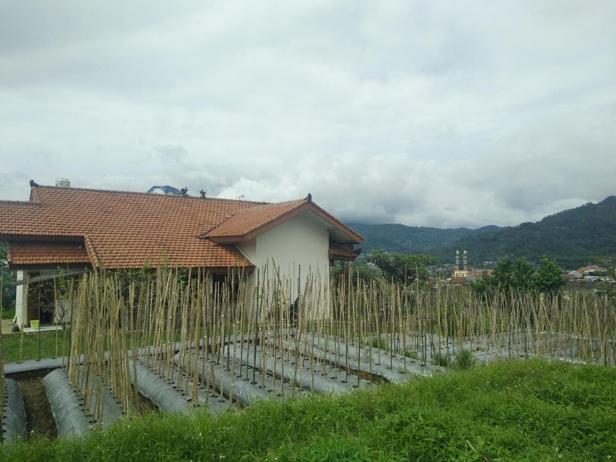Aldan Highlands: açıklamalar, özellikler, fotoğraf