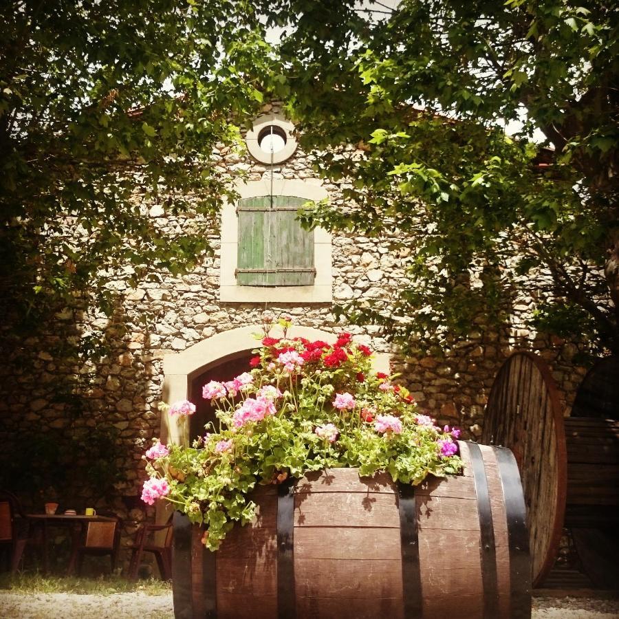 Guest Houses In Roquefort-de-sault Languedoc-roussillon