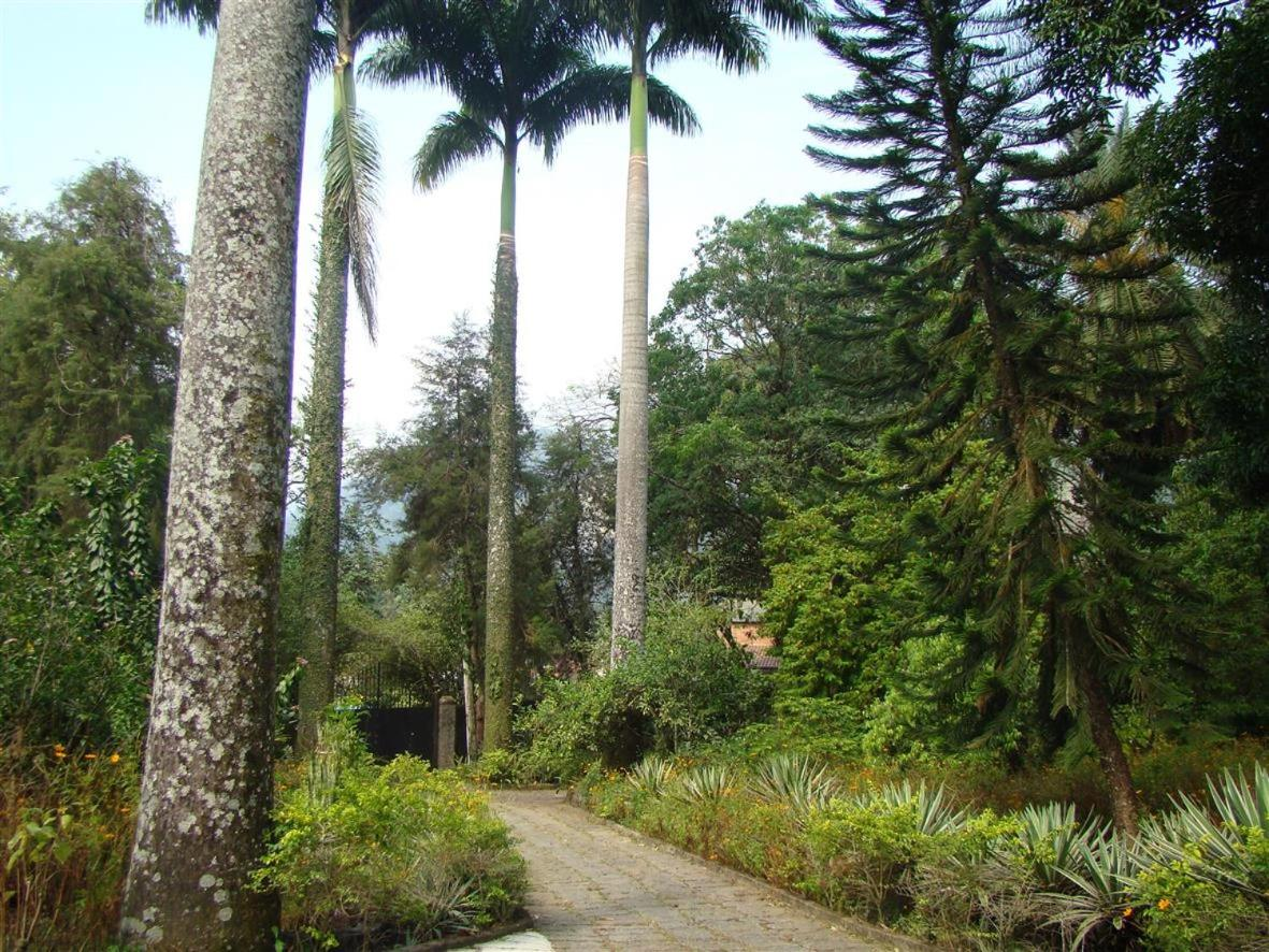 Bed And Breakfasts In Papucaia Rio De Janeiro State