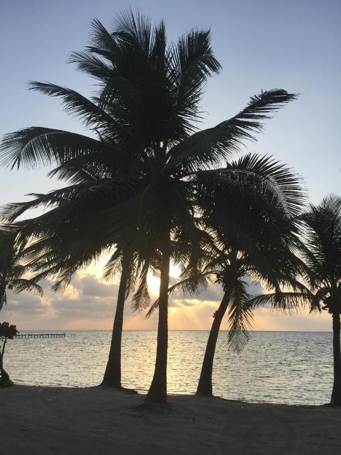 Hotels In Ambergris Cay