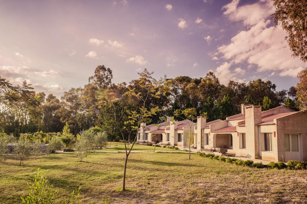 Bed And Breakfasts In Nueva Palmira Colonia