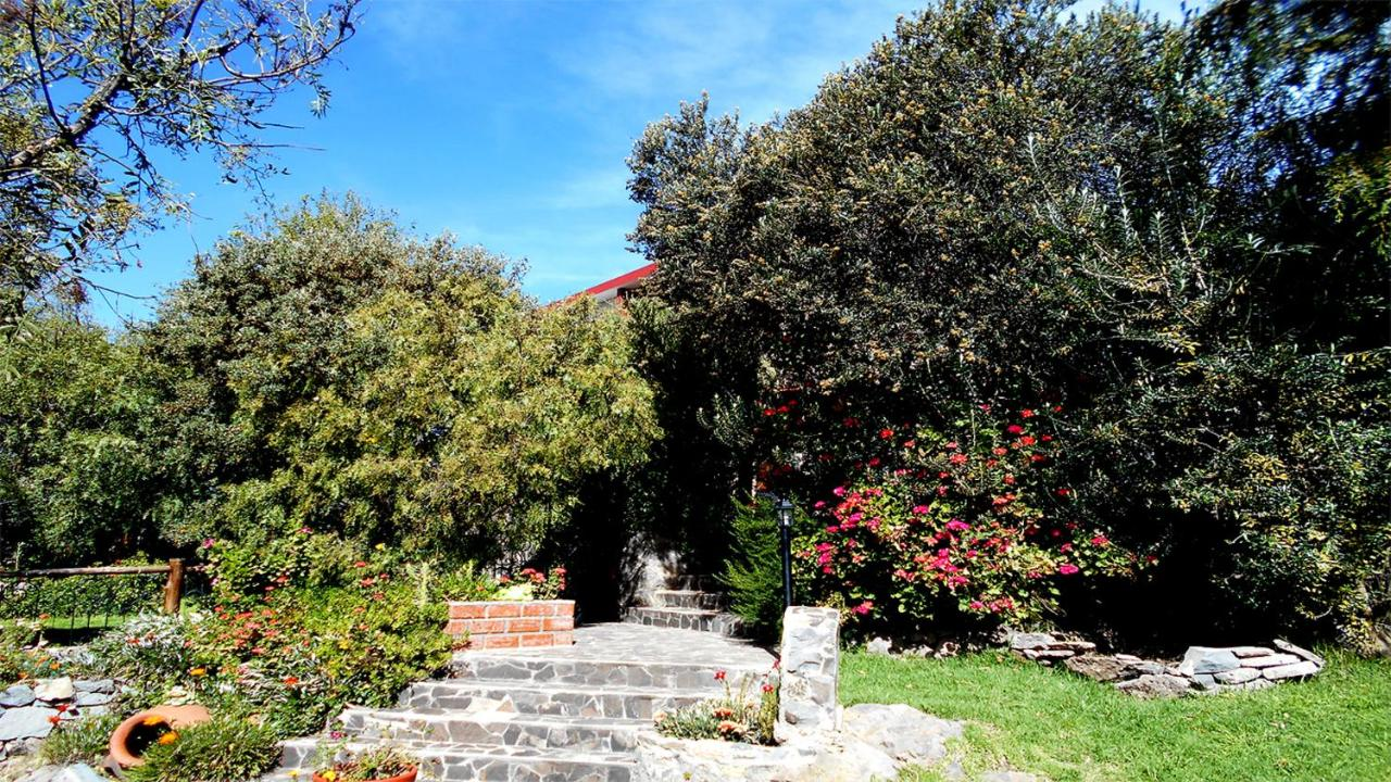 Bed And Breakfasts In Chucuito Puno
