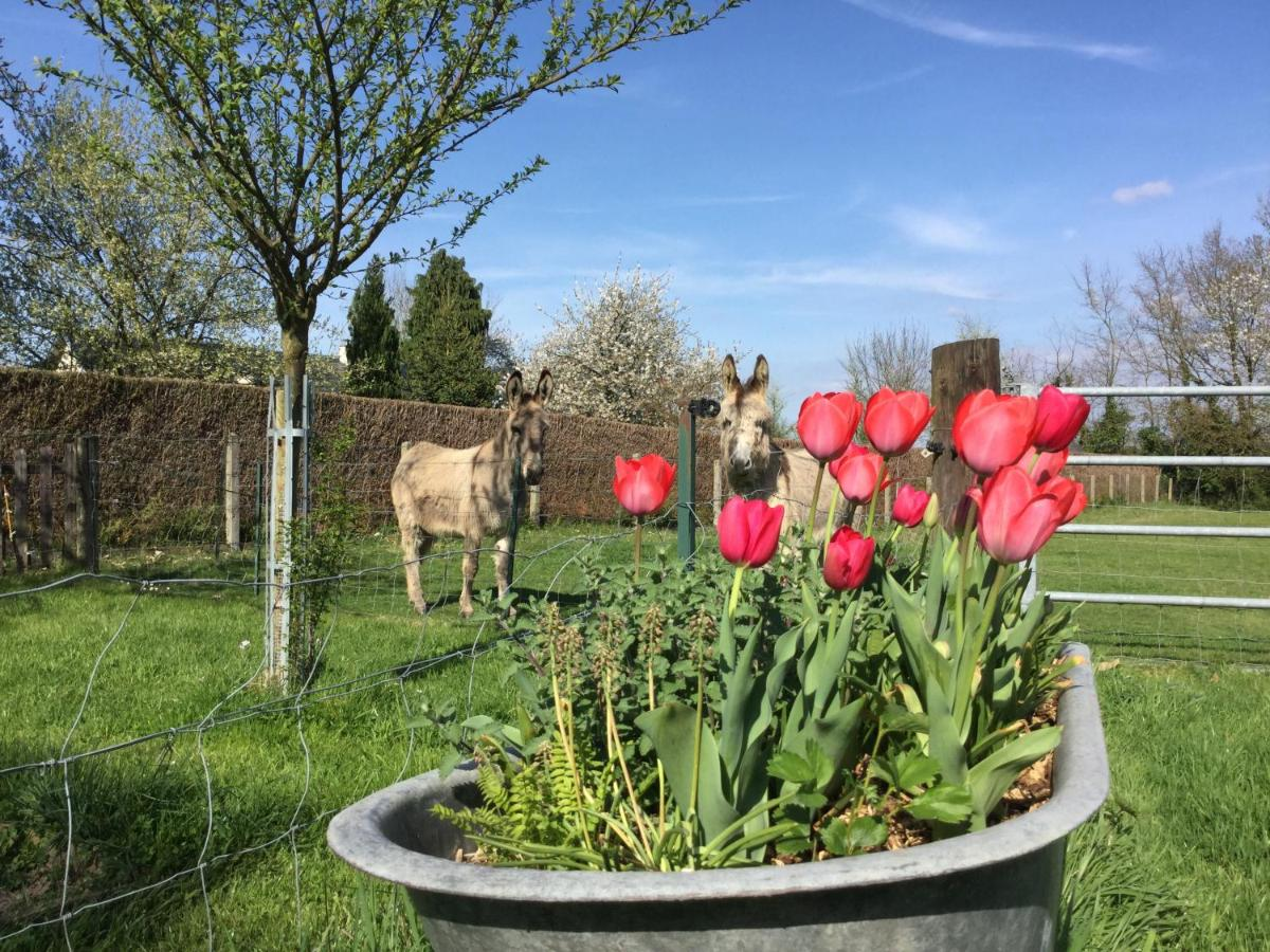 Bed And Breakfasts In Routot Upper Normandy
