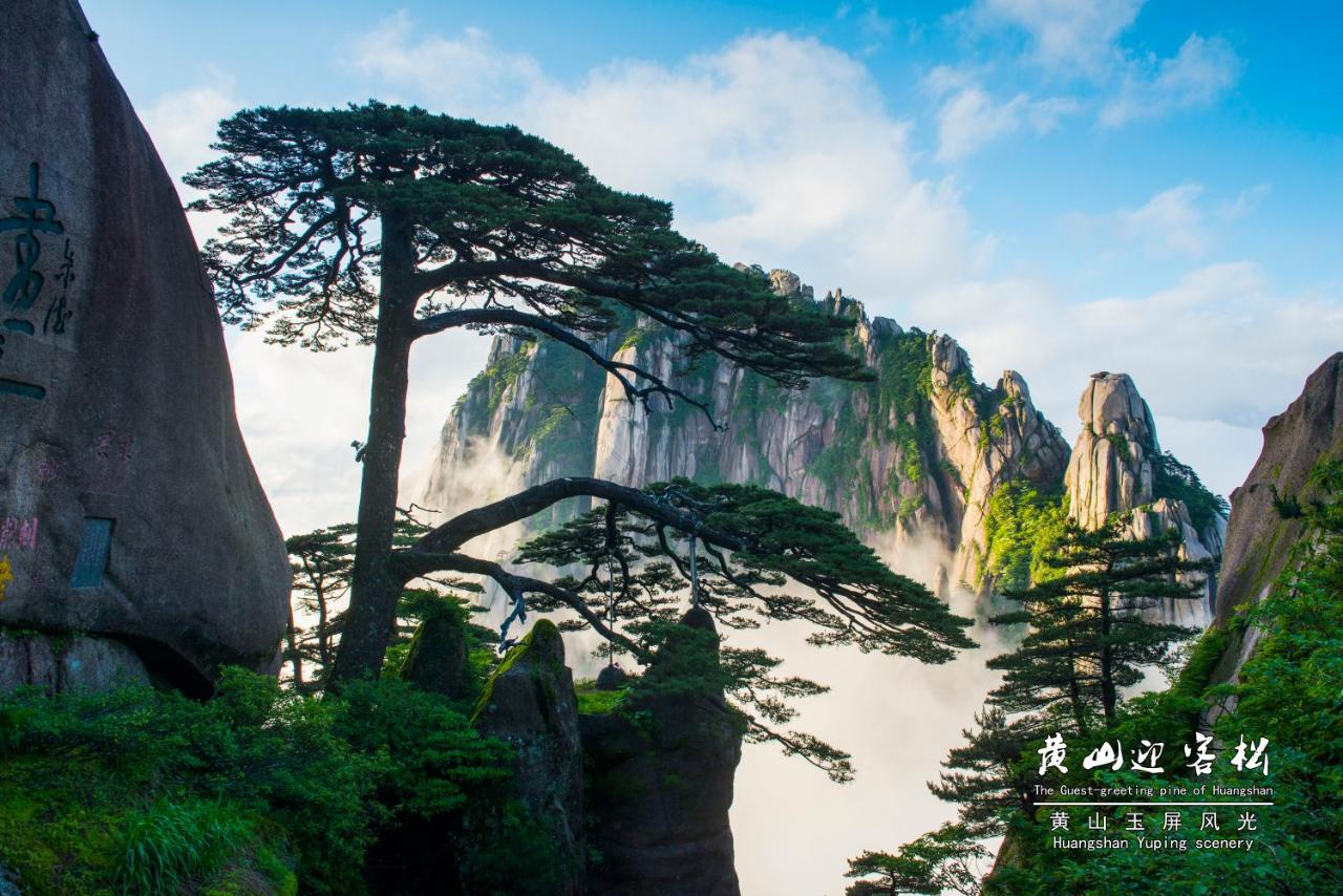 huang shan buddhist dating site Deals with depictions of wutai shan, the legendary home of the bodhisattva manjushri in tibetan buddhist literature, art, etc by bhairo5 in topics  religious & bible study.