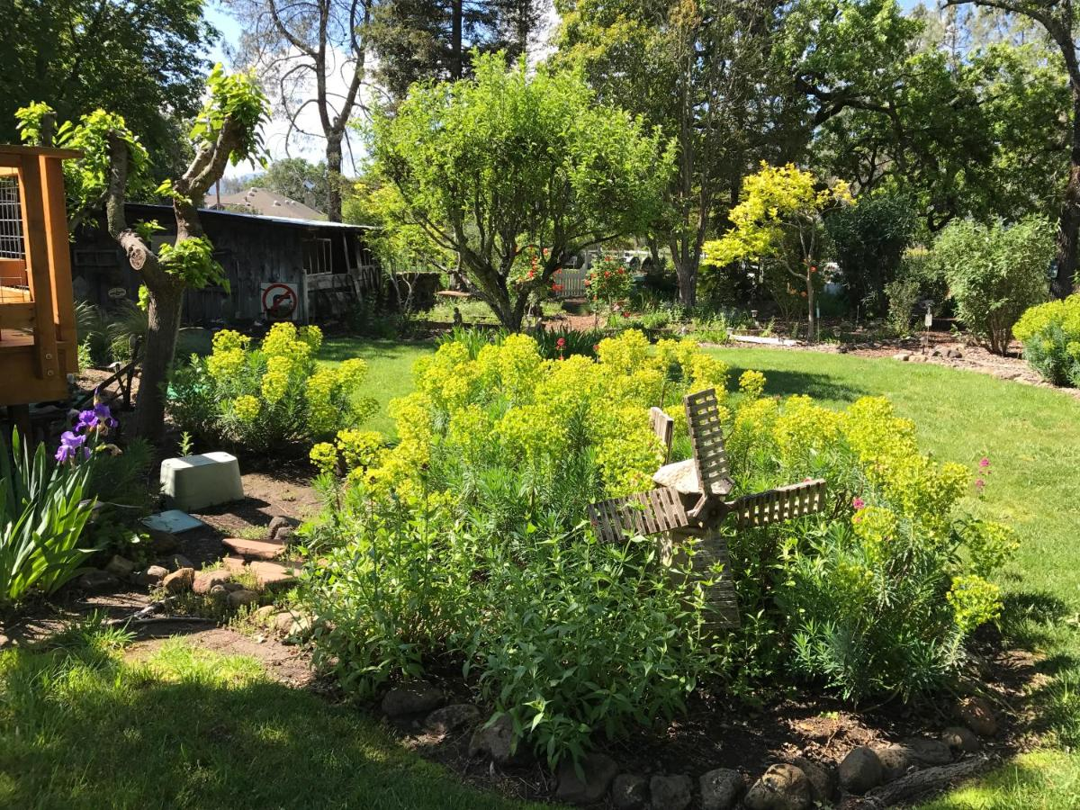 Bed And Breakfasts In St. Helena California