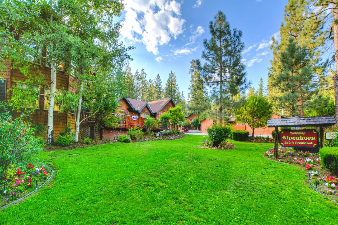 Bed And Breakfasts In Fawnskin California