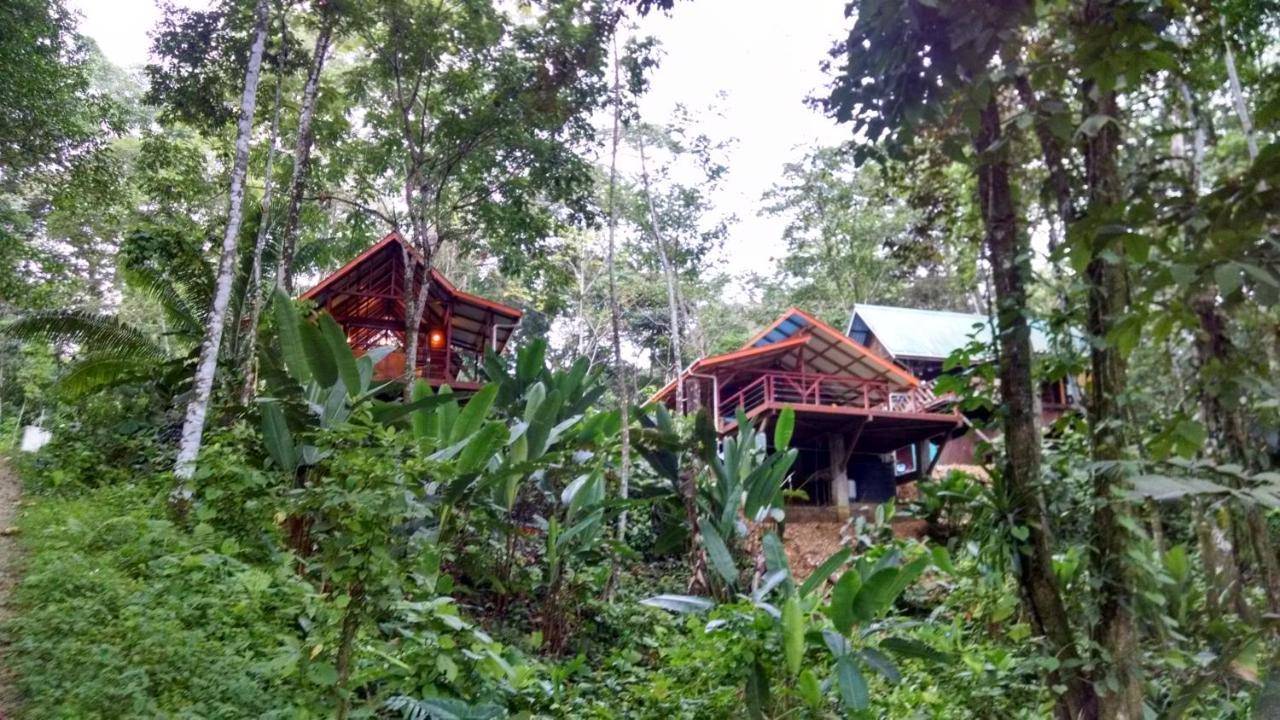 Bed And Breakfasts In La Gruta Isla Colon