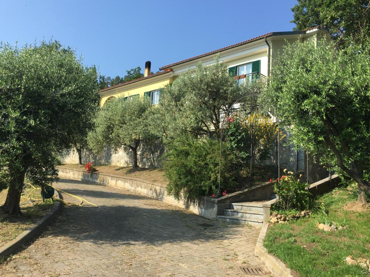 Guest Houses In Albissola Marina Liguria