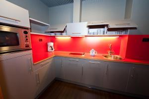 A kitchen or kitchenette at Apartamentos Gran Lakua