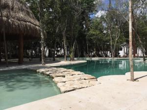 Apartamentos Riviera Maya Vip Puerto Morelos Mexico Booking Com