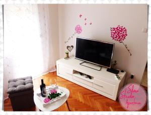 A television and/or entertainment center at Studio Apartment Slavi