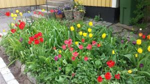 En trädgård utanför Lilla Munkhagen