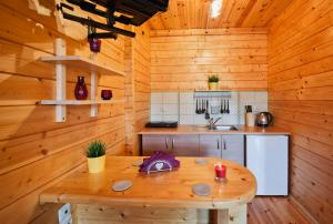 A kitchen or kitchenette at Domki Agat