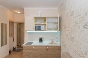 Кухня или мини-кухня в Apartments of Success