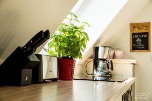 Küche/Küchenzeile in der Unterkunft TeigenHeim