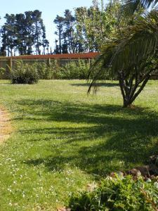 A garden outside Belle Cottage