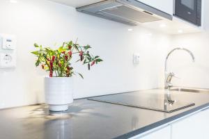 A kitchen or kitchenette at Biz Apartment Hammarby Sjöstad