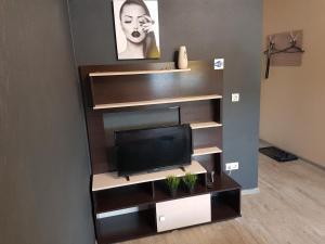 Телевизор и/или развлекательный центр в Ваша Зона Комфорта На проспекте Астрахова Лондон