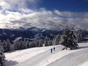 Ski au sein de le chalet ou à proximité