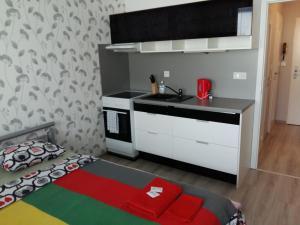 A kitchen or kitchenette at Apartment Sportovy