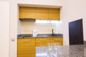 Cuina o zona de cuina de Pushkinskaya Apartments