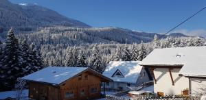 Ferienhaus Heidi during the winter