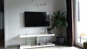 A television and/or entertainment center at Apartma Javoršček