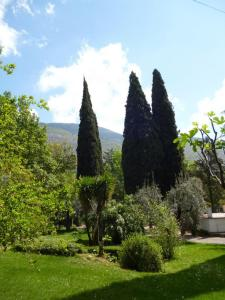 A garden outside Casa Castagno