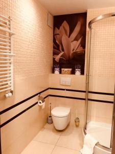 A bathroom at Apartament 231 Diva