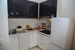 A kitchen or kitchenette at Apartments Viskovic Margita