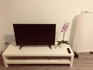 A television and/or entertainment center at Blue apartment