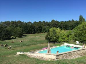 Vue sur la piscine de l'établissement Pouzatel ou sur une piscine à proximité