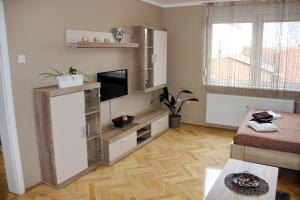 TV i/ili multimedijalni sistem u objektu Apartment Cherry