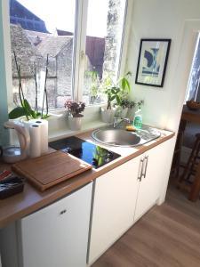 Cuisine ou kitchenette dans l'établissement Le Coquet