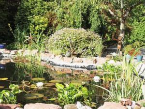 A garden outside Prospecthill