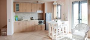 A kitchen or kitchenette at Villa Despina Green Suites