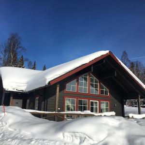 Bolodge Cottages under vintern
