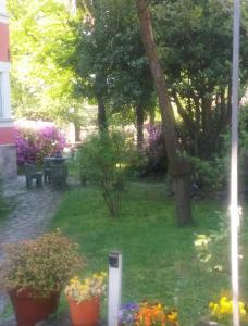 A garden outside Casa Orisca