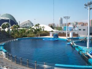 The swimming pool at or near Lindo piso en Sagunto 6 kilómetros de la playa