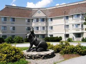 Picture of Black Bear Inn Conference Center and Suites