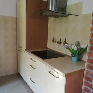 A kitchen or kitchenette at As House