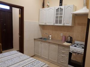 Studio on Chornovola tesisinde mutfak veya mini mutfak