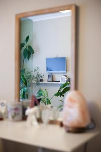 TV o dispositivi per l'intrattenimento presso Apartment on Ozerkovaya
