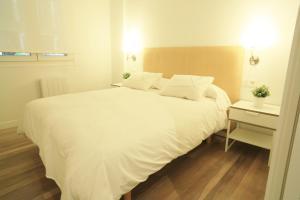 Zuhaizti Apartment房間的床