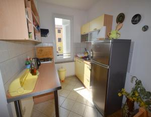 A kitchen or kitchenette at Apartments Horvat