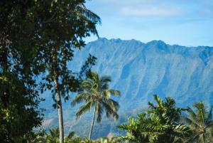 Γενική θέα στο βουνό ή θέα στο βουνό από  αυτή η παραθεριστική κατοικία