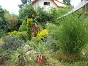 Jardín al aire libre en Susy Apartman
