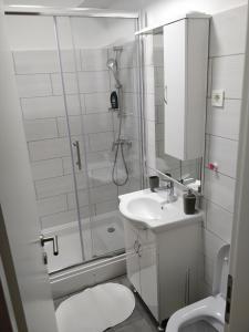 A bathroom at Savski Gaj Apartments