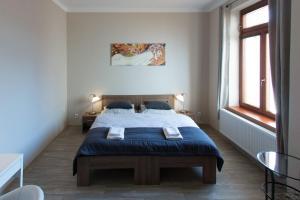 Postel nebo postele na pokoji v ubytování Apartmány Resident